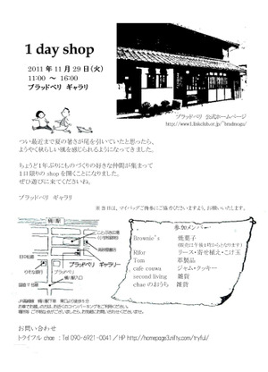 1dayshop2011b5